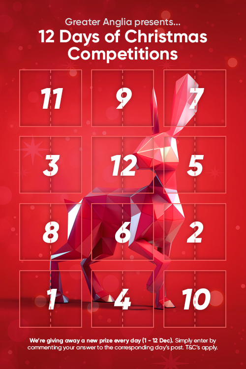 Image of 12 Days of Christmas Competitions advent calender