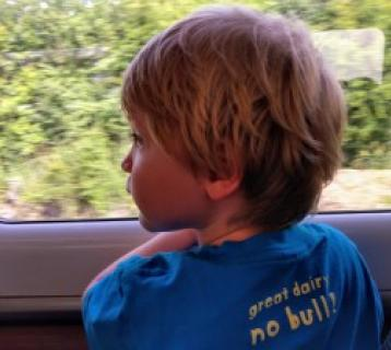 A boy looks out from the train