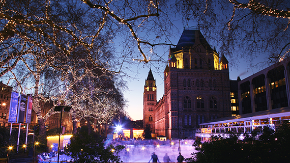 The Natural History Museum's ice rink