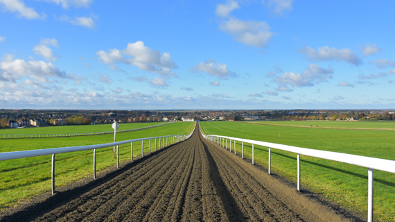 The Gallops, Newmarket Racecourse